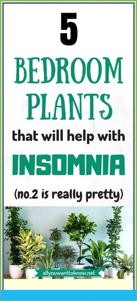 If You Suffer From Insomnia Then Read Which 5 Home