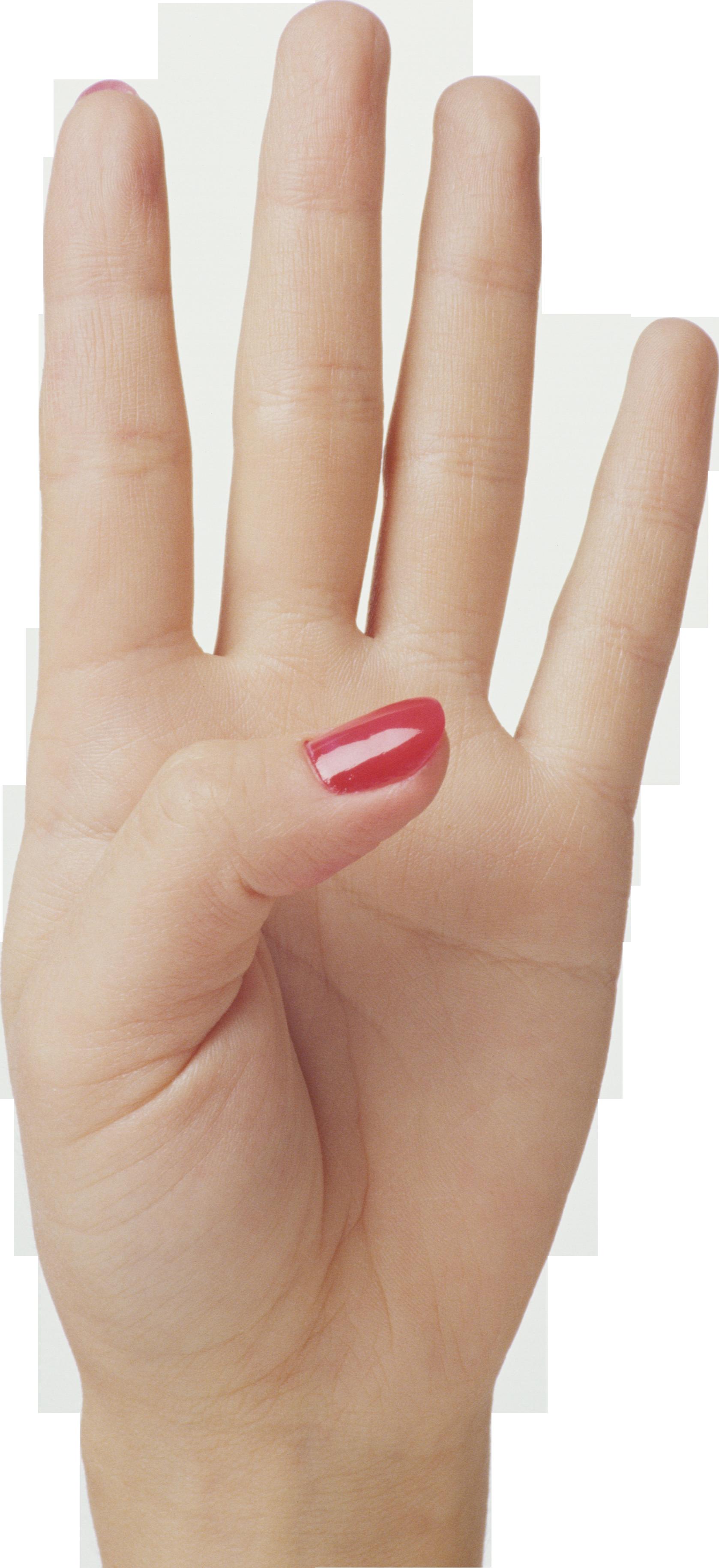 Four Finger Hand Png Image Finger Hands Lexus Logo Free Clip Art