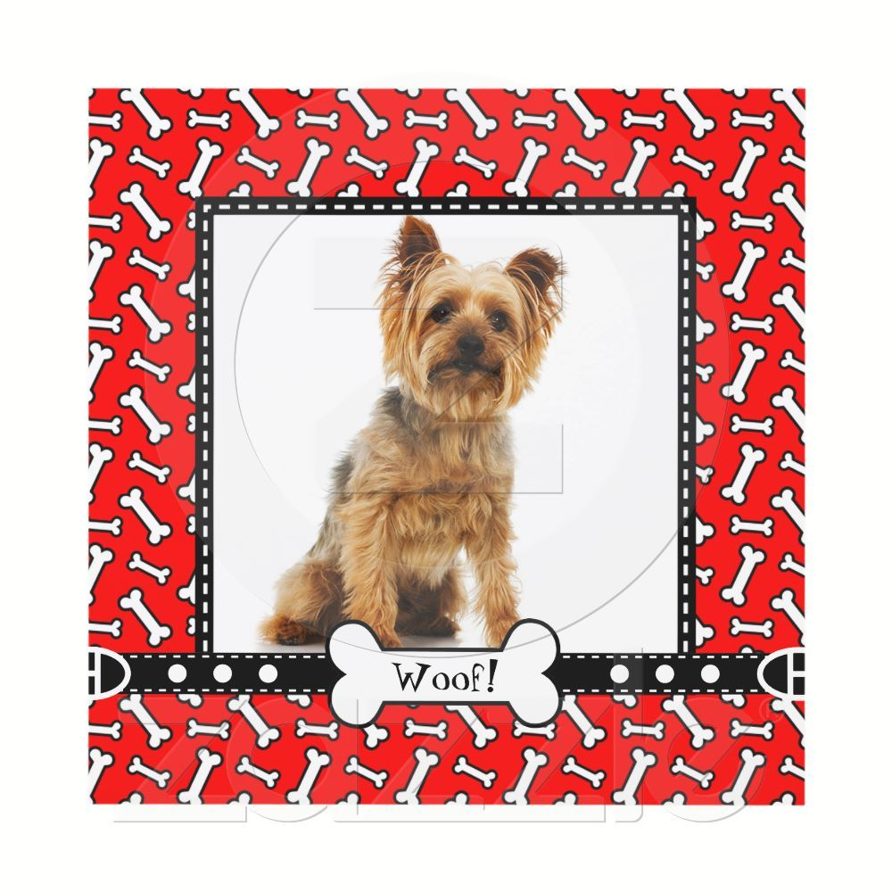 Dog Birthday Party, Doggie Picnic in Park Card