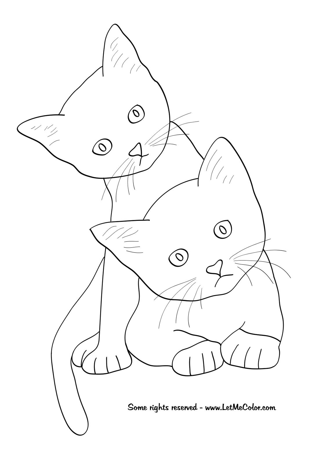 Cats-coloring-page.png (1069×1600)   DIBUJANDO UN LINDO GATITO ...