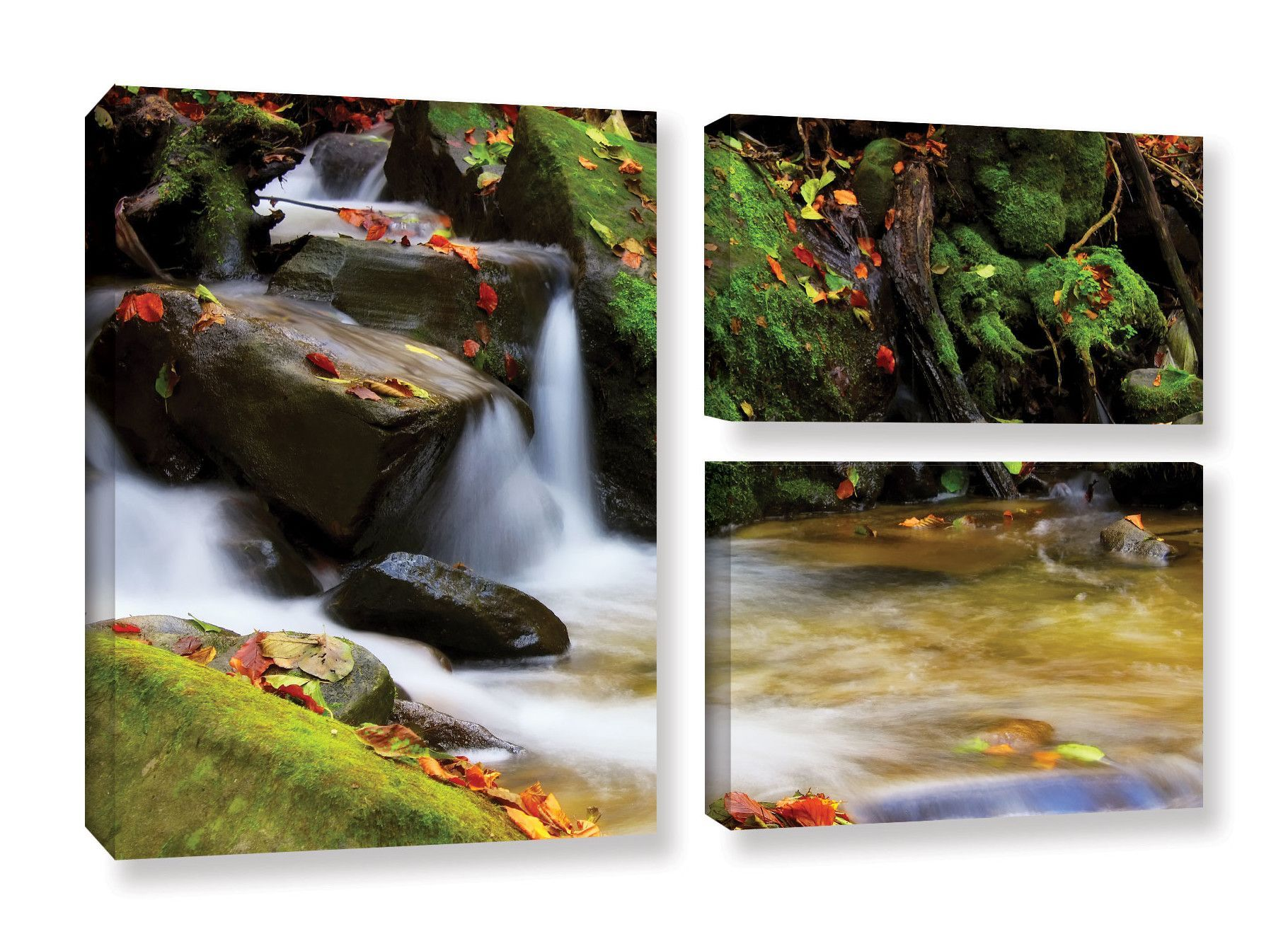 Timeless Forest by Dragos Dumitrascu 3 Piece Photographic Print on Wrapped Canvas Set