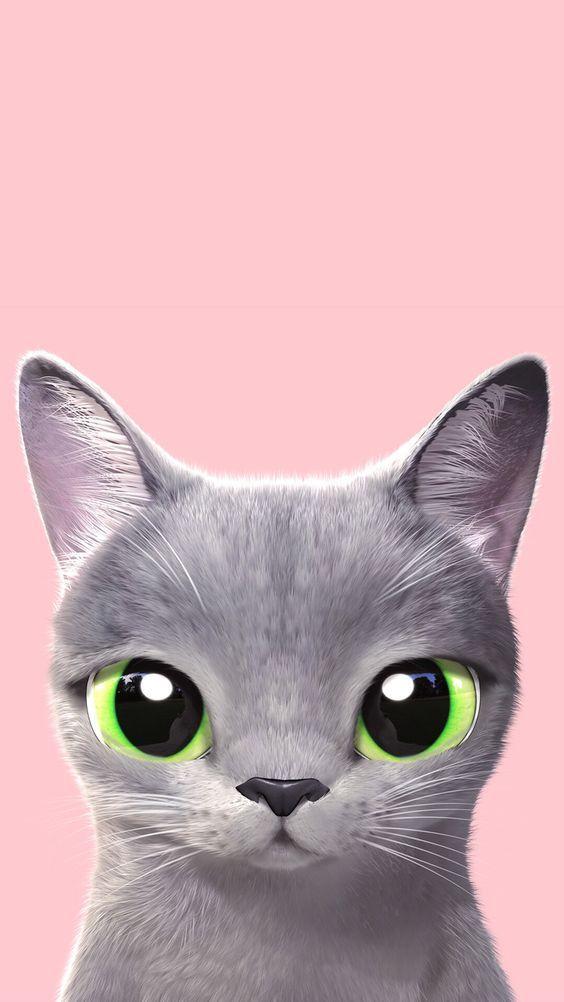 22 Ide Cat Wallpaper Terbaik Wallpaper Kucing Kucing Putih Gambar Anjing