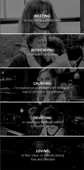 ron and hermione + relationship development
