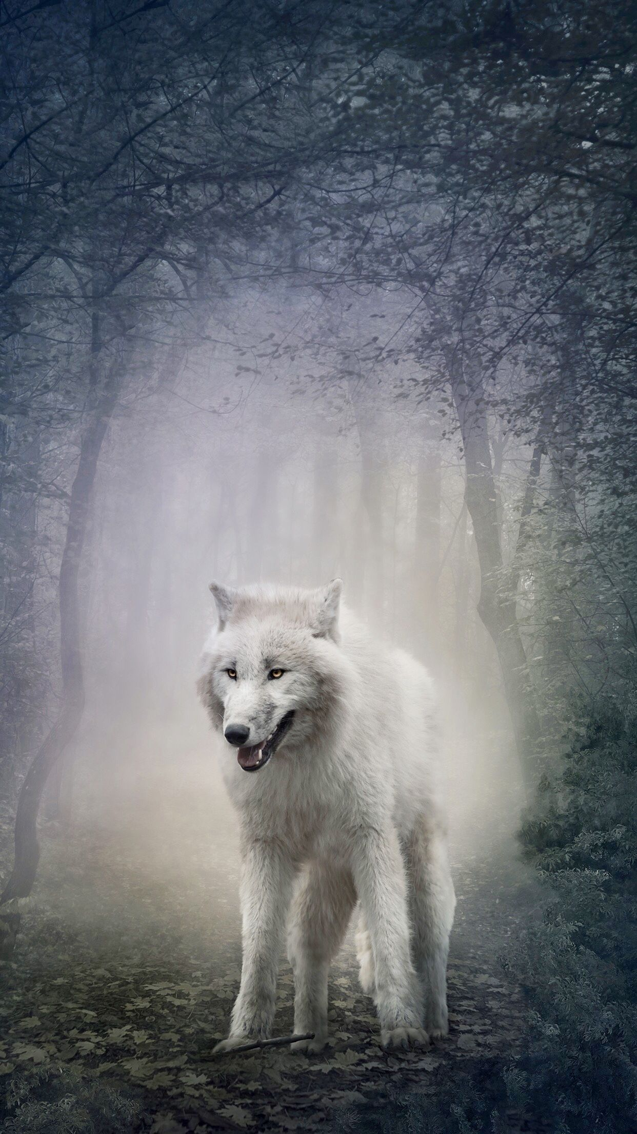 Wolf Iphone Wallpaper Iphone Wallpapers Arte Dei Lupi E Animali