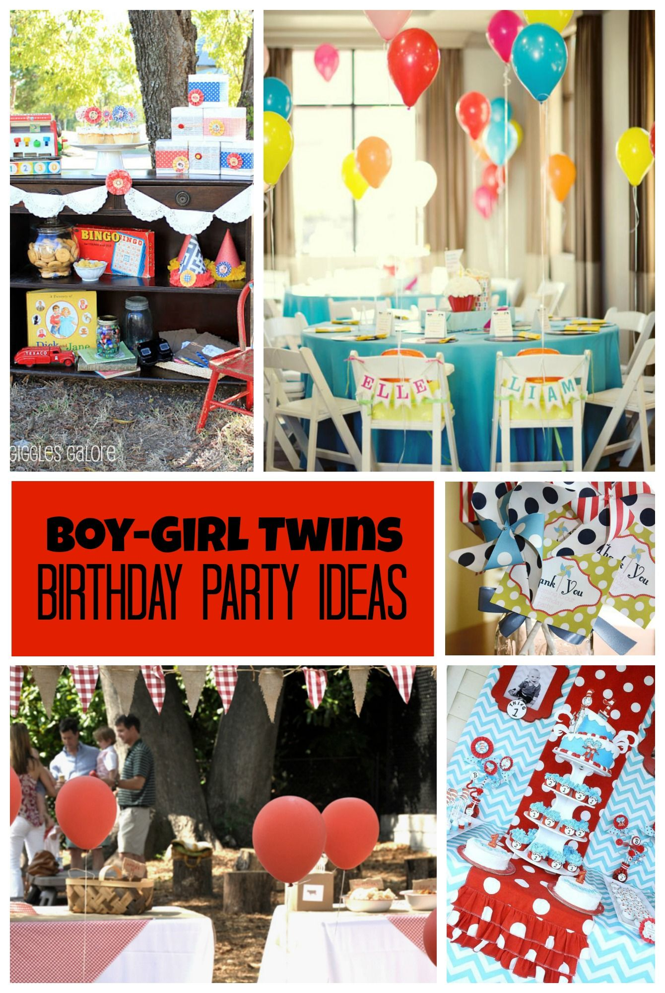 Twins Birthday Party Ideas for Boy Girl Twins Twin birthday