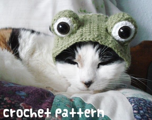 crochet pattern frog pet hat halloween costume cat toad froggy amigurumi kawaii small dog chihuahua disguise instant download by xmoonbloom on etsy