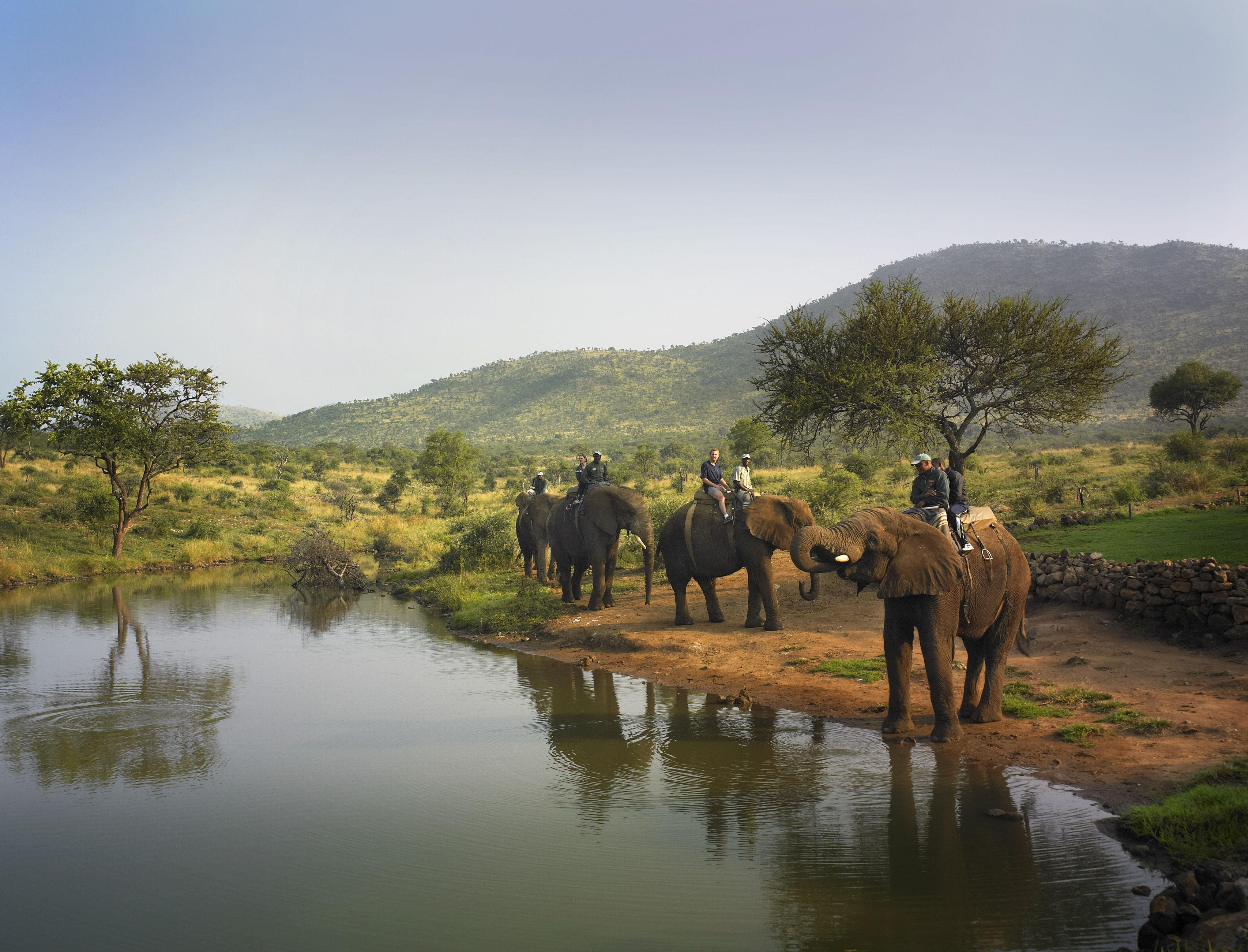 Elephant rides in Sun City, South Africa