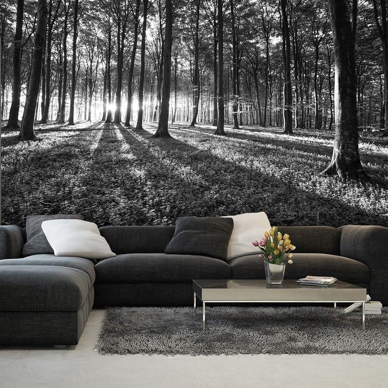 Bws Black White Forest Wall Art Pinterest Wall Murals