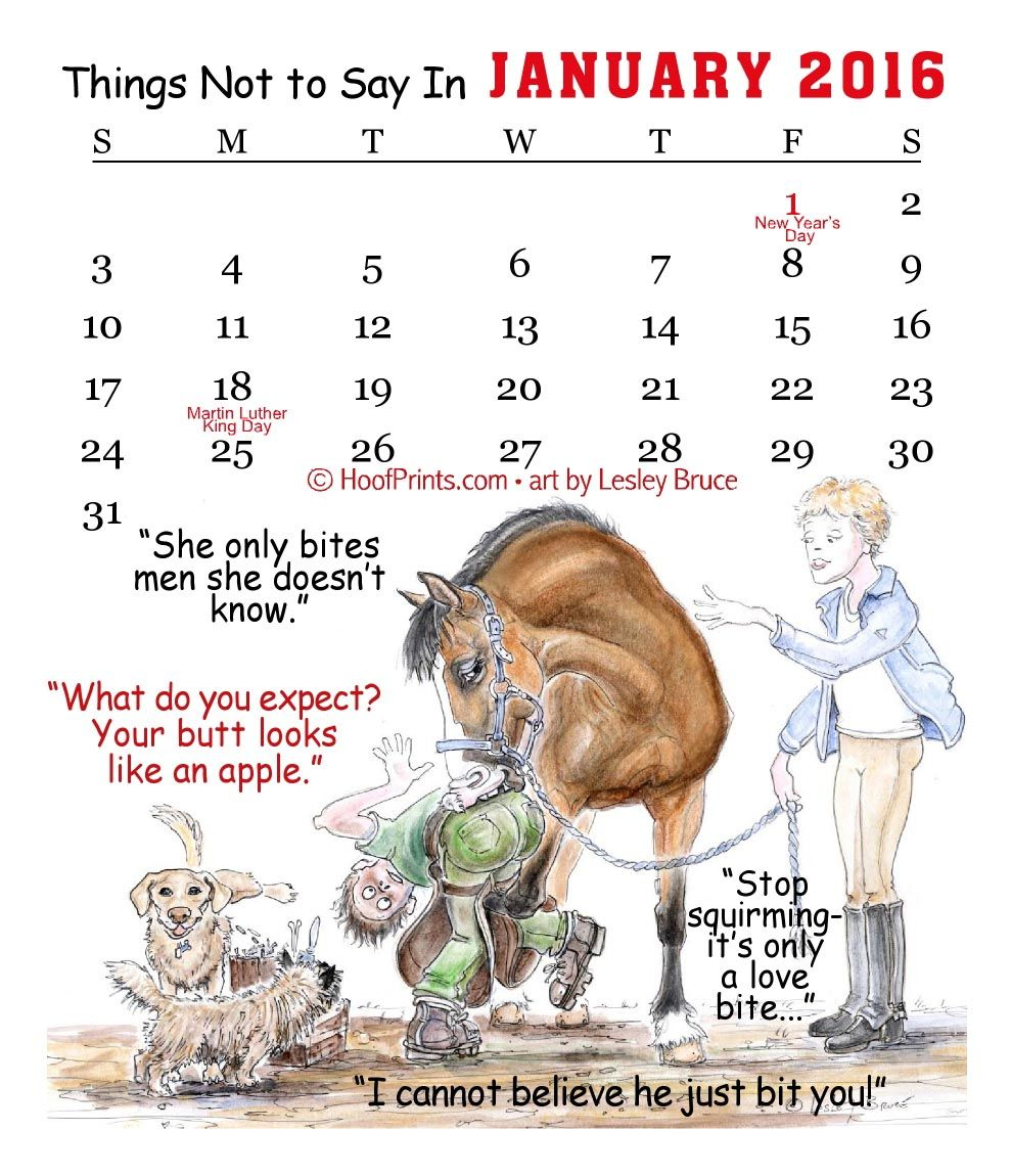 2016 Magnetic Business Card Calendar - Things Not To Say To A ...