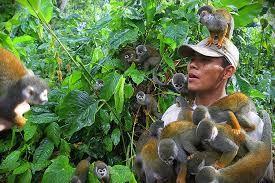 Isla de los Micos Colombia
