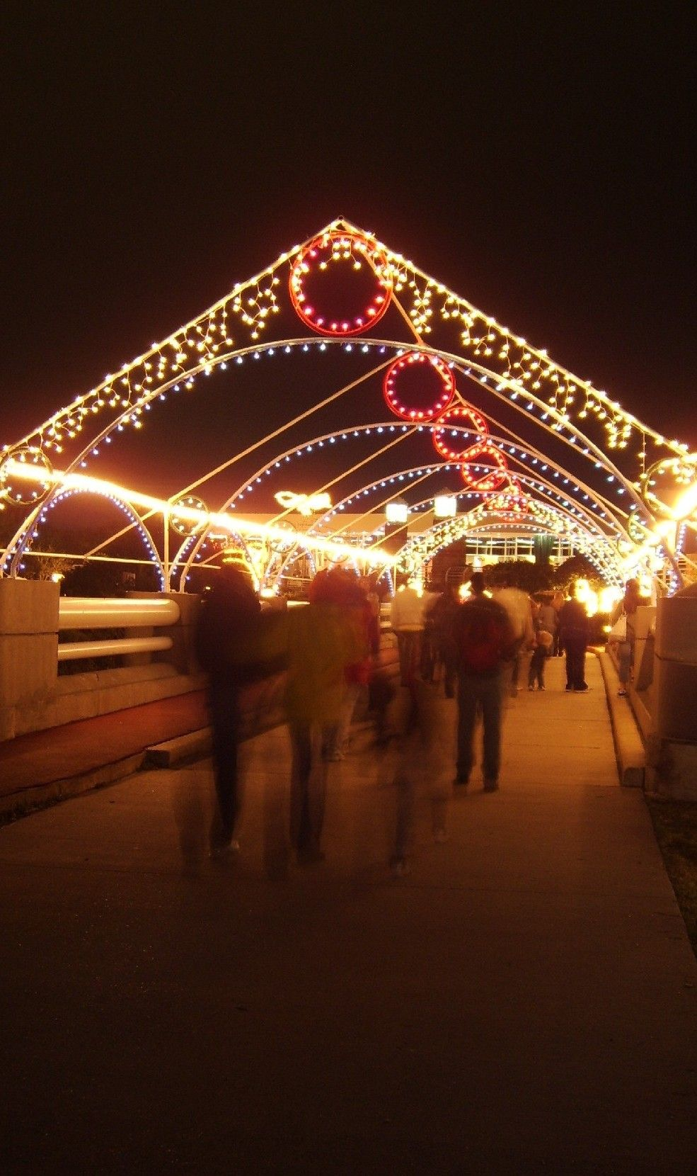 TheFlashList | Moody Gardens Festival of Lights | Galveston, TX | 1 ...