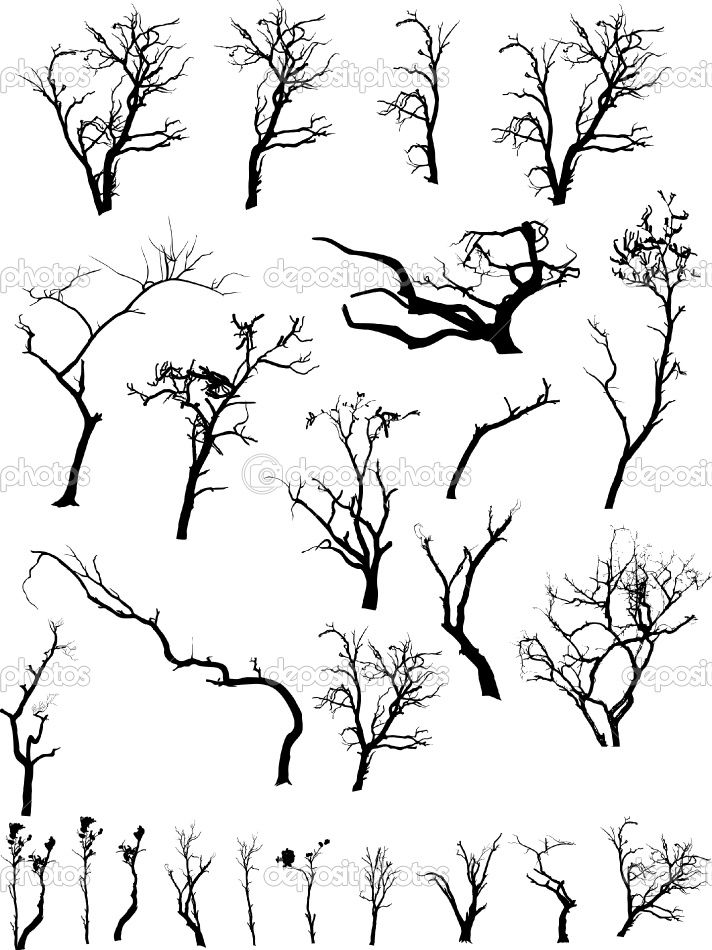 Pin By Susan Hansen On Scary Stage Ideas Branch Drawing Tree Drawing Tree Silhouette