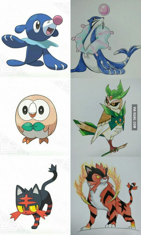 I drew this as a prediction. All based on Circus performers (Ball seal, Ring Master, Ring Tiger) Pokemon Sun and Moon