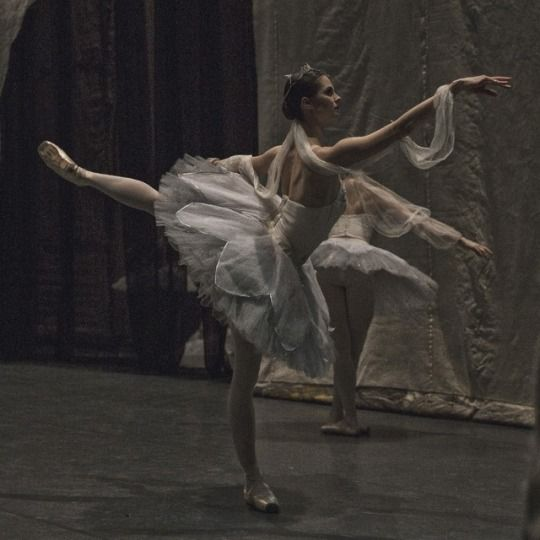 Pin By Jasmine Lebeau On 12 Secrets In The Mist Ballet Photography Ballet Inspiration Ballet Poses