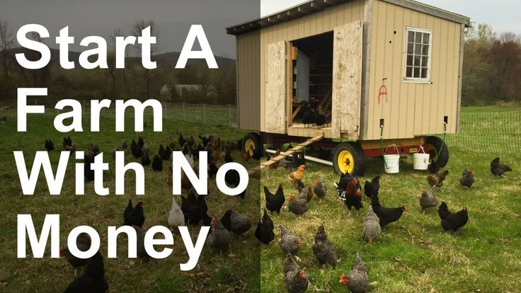 How to Start a Farm with No Money Starting a farm