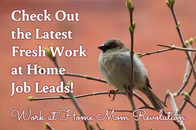 Check Out  the Latest  Fresh Work  at Home  Job Leads! / Work at Home Mom Revolution