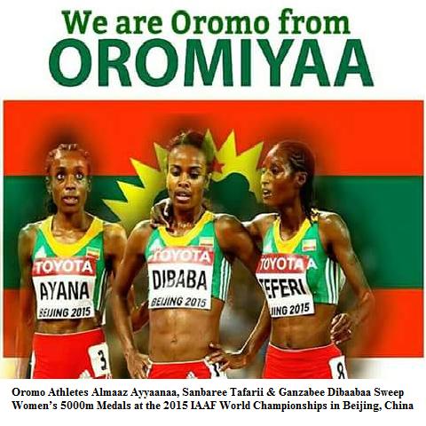 Total victory to Oromo athletes (1-2-3). #Oromo Athletes Almaaz Ayyaanaa, Sanbaree Tafarii & Ganzabee Dibaabaa Sweep Women's 5000m Medals (!-2-3) at the 2015 #IAAF World #Championships in Beijing, China. Almaaz Ayyaannaa's of 14:26.83 marks a new championship record. Ganzabee is the world record-holder and 1500m world champion. Almaz Ayana is the fastest 5000m runner so far in 2015. Almaz #Ayana. #Sembere #Teferi. #Genzebe #Dibaba…
