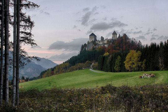 Burgruine Gallenstein, Styria / Austria (by Mack Horton)