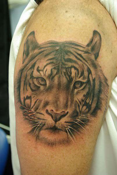 bd3b0ce4af059 60 Tatuagens de tigres - Semana Oriental | Tattoo | Tatuagem de ...