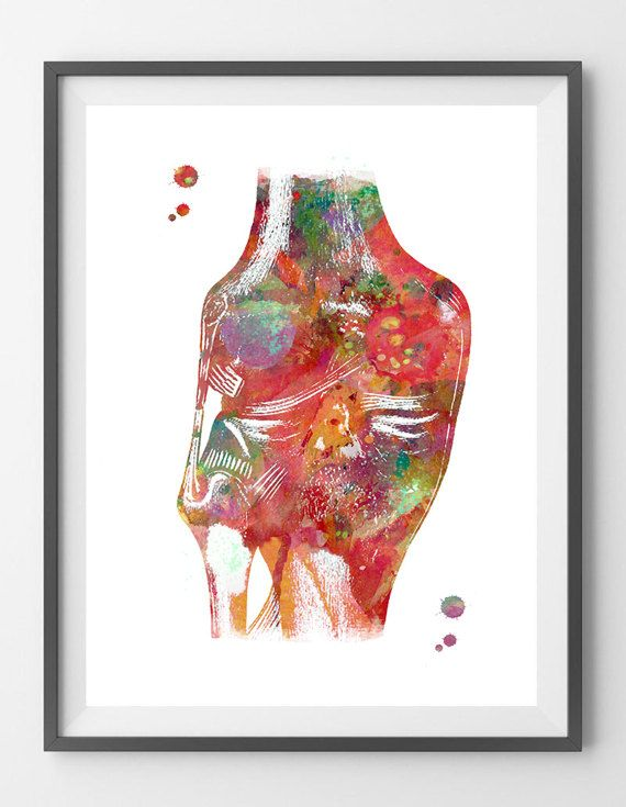 Knee joints medical art print knee ligaments and tendons poster ...