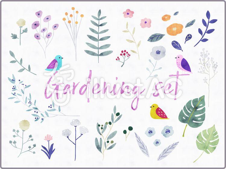 水彩手描きボタニカルセット 水彩 植物 鳥 おしゃれ ボタニカル 自然 花 手描き かわいい ナチュラル 花 イラスト 水彩 フリー素材 イラスト