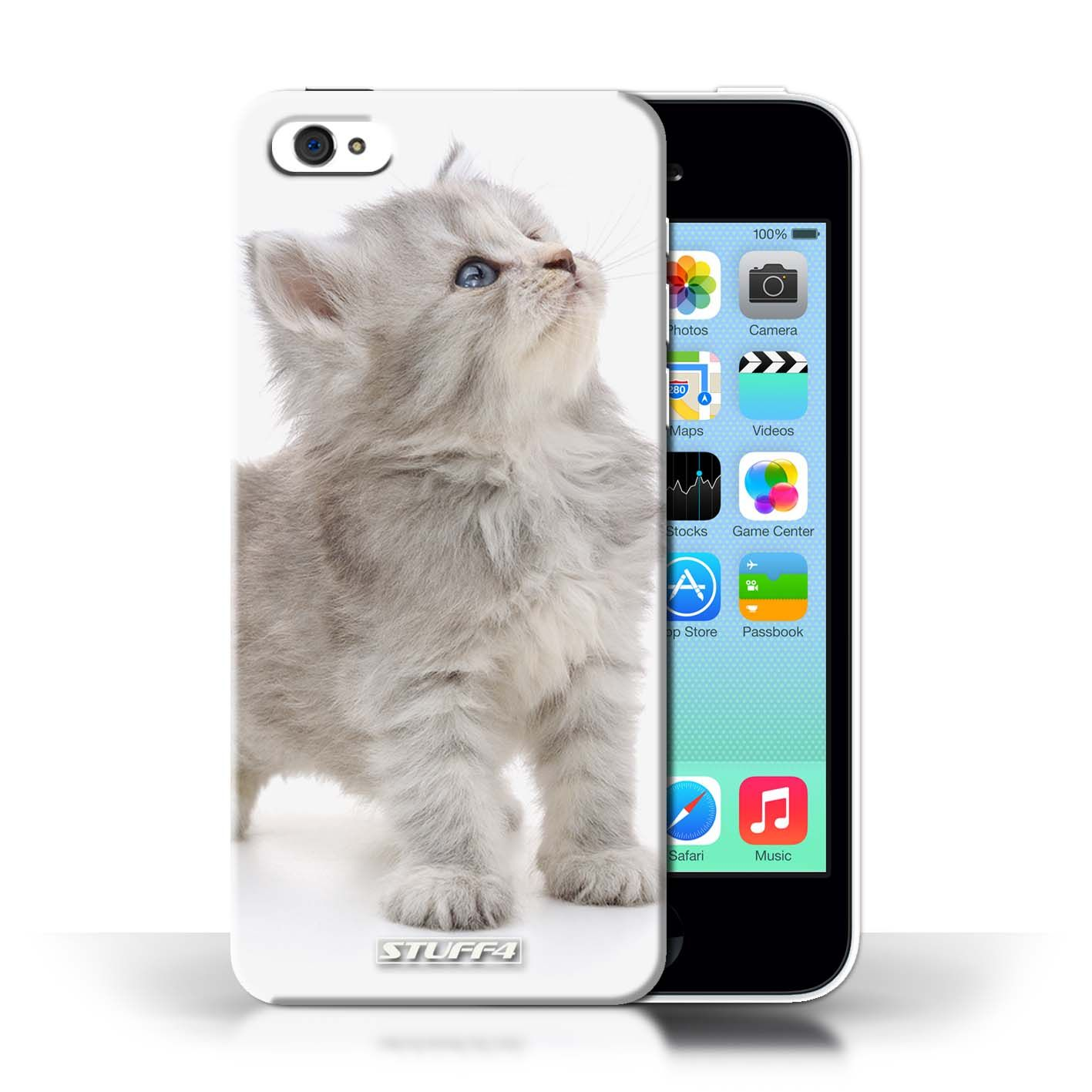 Looking Up Cute Kittens Design For Clear Hard Back Case Kittens Cutest Apple Iphone 5c Stuff4