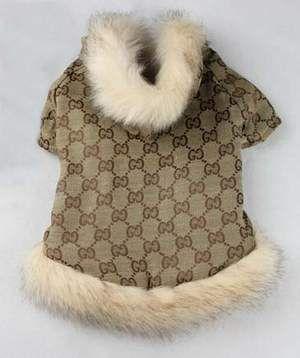 Gucci Dog Coat Fashion Dog Clothes Dog Fashion Clothes Fancy
