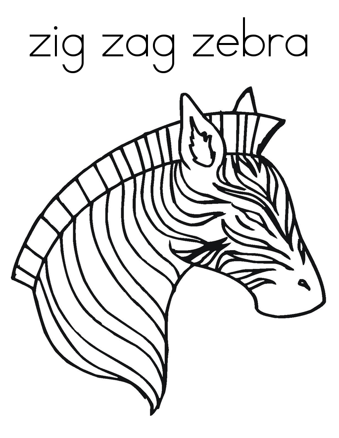 Coloring Sheets Zebra Collection
