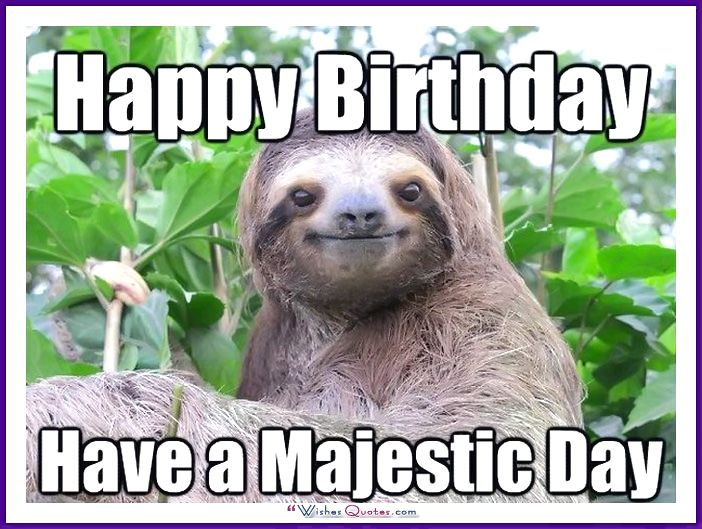 Sexual harassment sloth meme birthday
