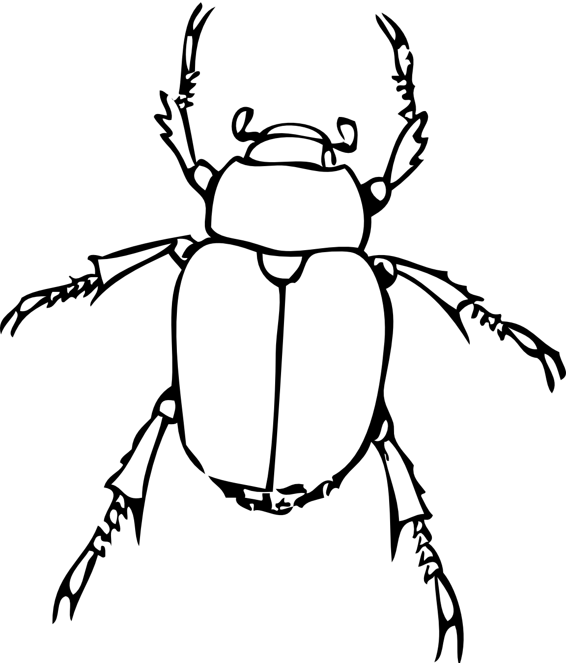Bug Line Drawing