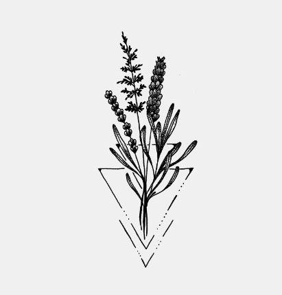Lavander tattoo -meaning: Faithful, Purification ... |Lavender Tattoo Outline