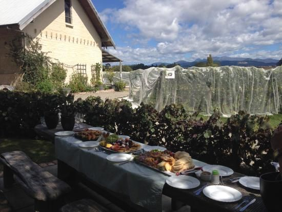 The Dream Maker New Zealand Destination Weddings & Events - Winery tours and picnics