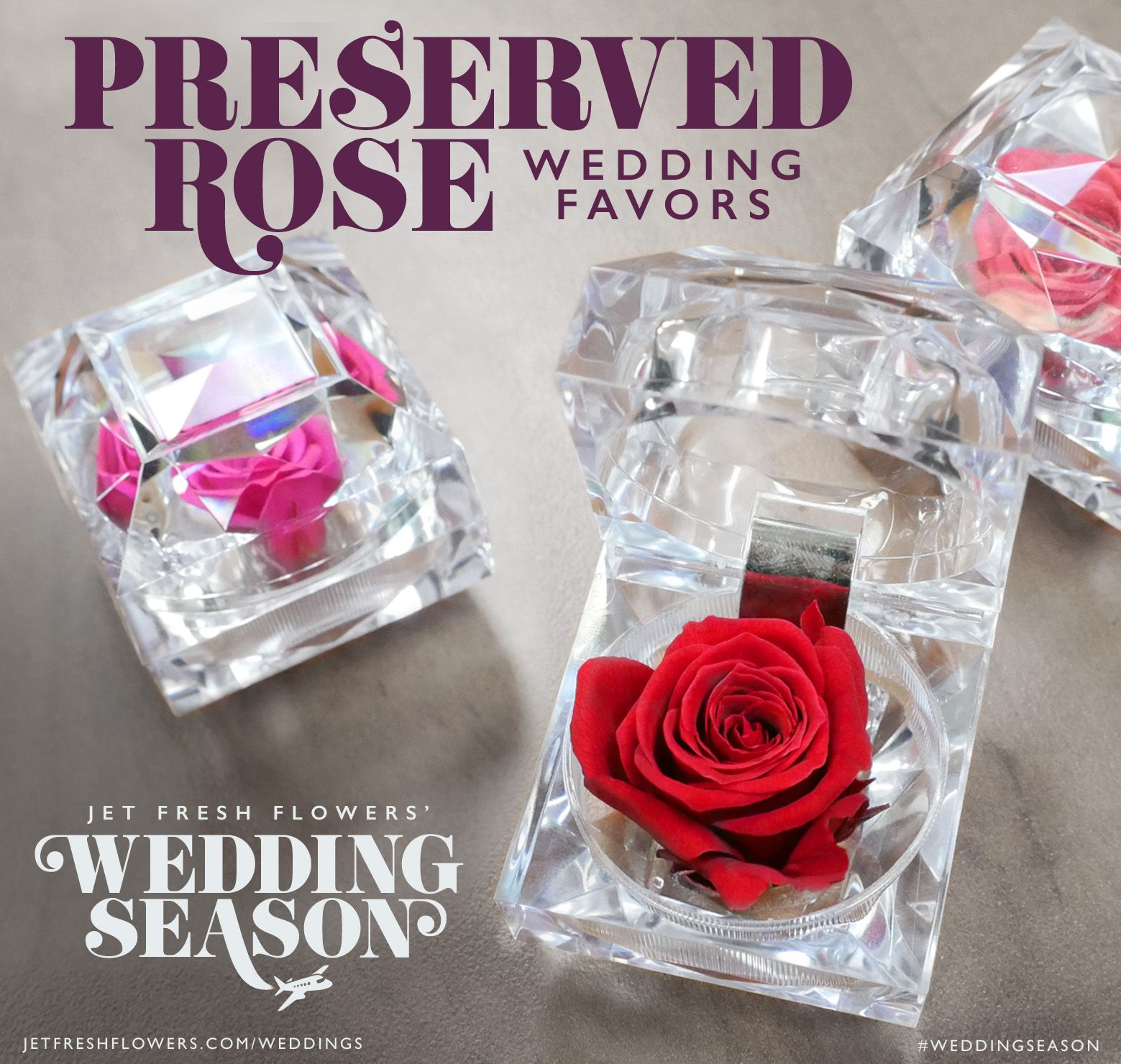 Shop our Jet Fresh Preserved Roses and create wedding favors of your ...