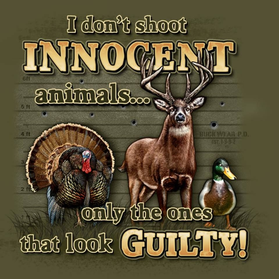 Funny Hunting Quotes Pinhunting Season On Hunting  Season   Pinterest