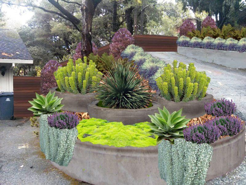 Conceptual image xeriscape modern landscaping for Zero maintenance garden