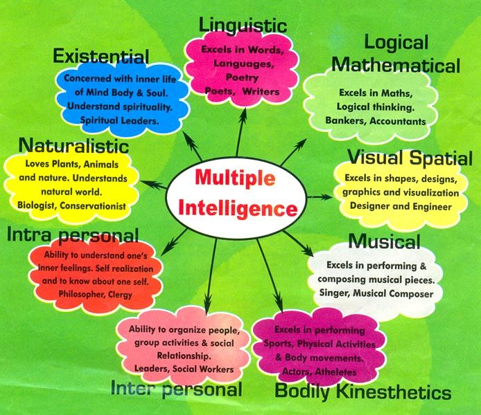 The importance of howard gardners theory of intelligence