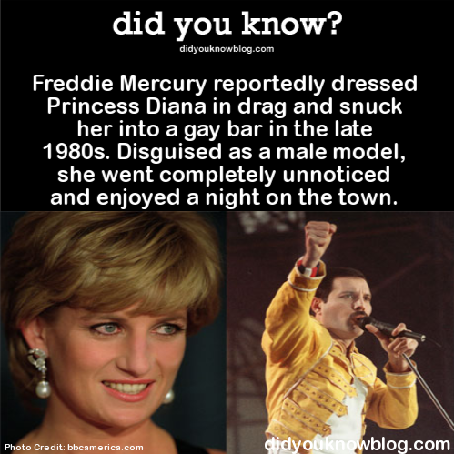 Freddie Mercury reportedly dressed Princess Diana in drag and snuck her into a gay bar in the late 1980s. Disguised as a male model, she went completely unnoticed and enjoyed a night on the town.  Source #freddiemercury