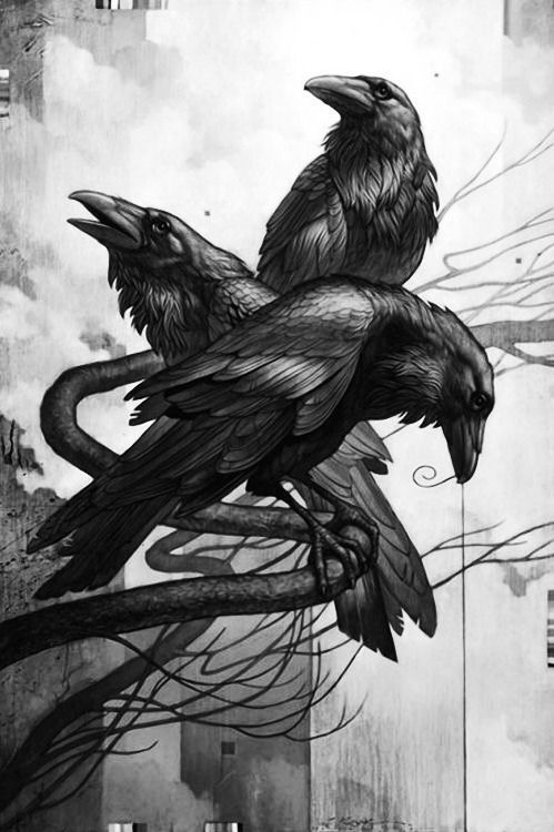 The Raven Is The Symbol Of The Criminal Group Lead By The Ferocious