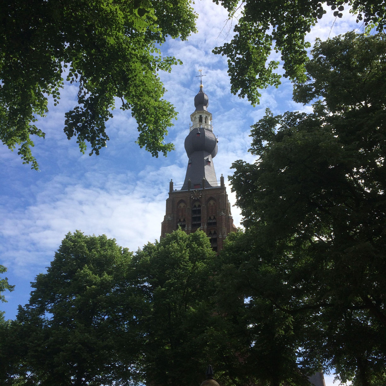 5 juni 2017 - Mooi rondje op 2e Pinksterdag: Hilvarenbeek (Vrijthof, Sint-Petrus'-Bandenkerk) en lunchen bij de Seterse Hoeve in Dorst (Een Baroniepoort).