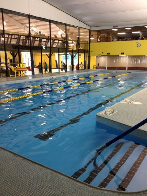 Indoor Pool This That Pinterest Gym Indoor Swimming Pools And Free Weights