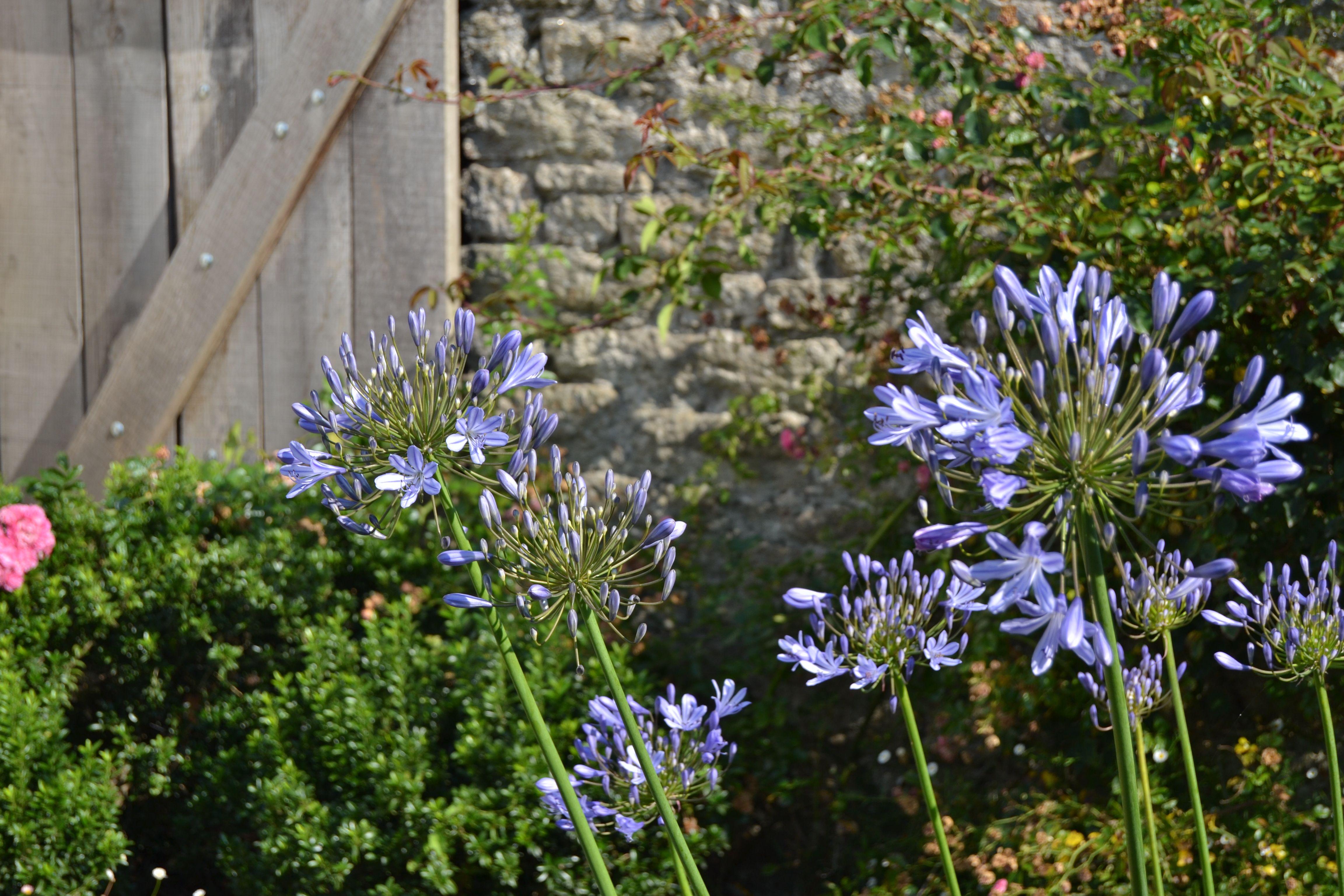 821c4c0526b583243b585ea342af56a7 Luxe De Salon De Jardin California Schème