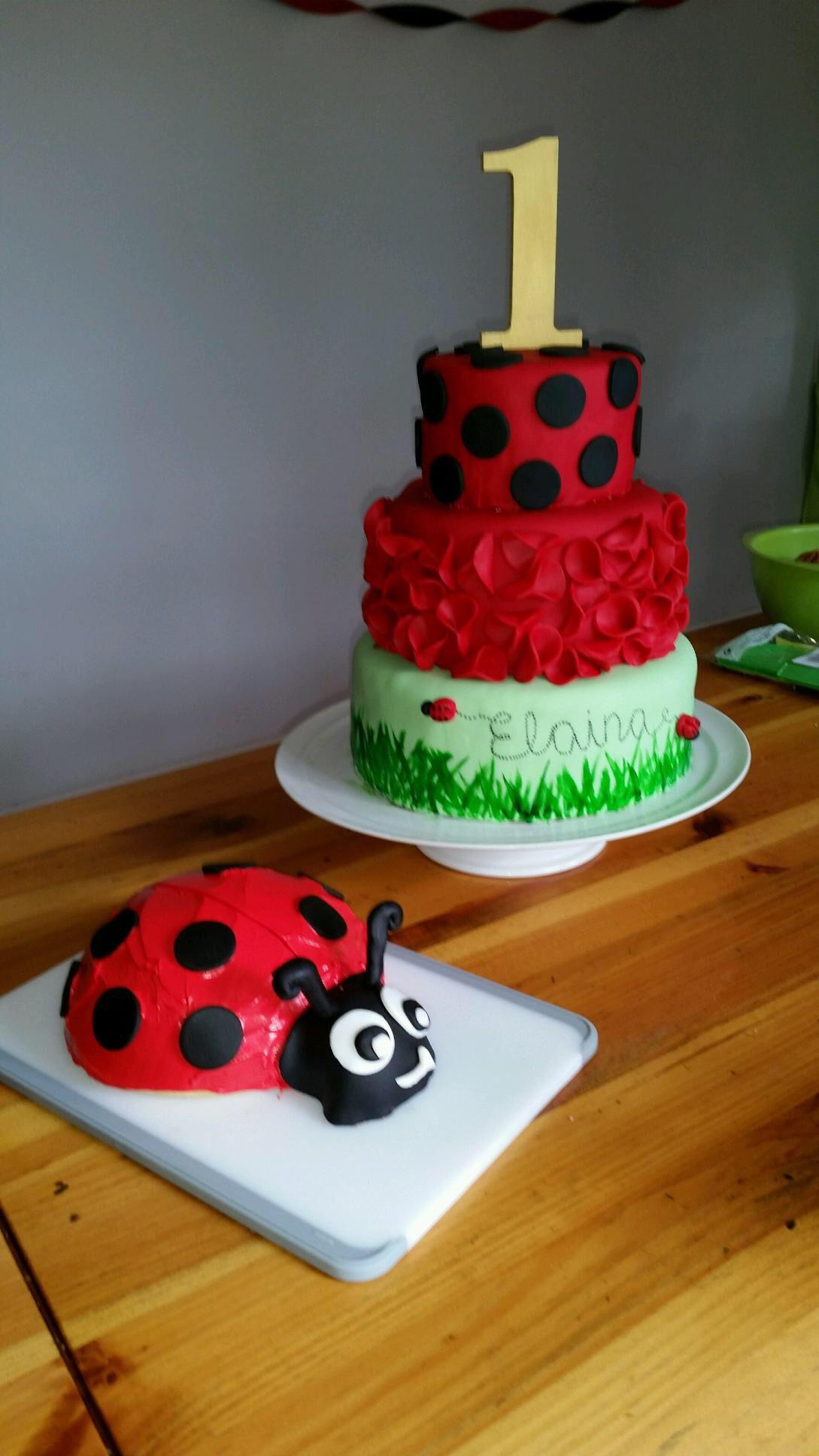 Admirable Ladybug Theme Elainas First Birthday With Images Ladybug Funny Birthday Cards Online Kookostrdamsfinfo