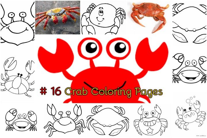 Exoskeleton Buddies Crab Coloring Pages For Kids Coloring Pages Printable Coloring Pages Coloring Pages For Kids