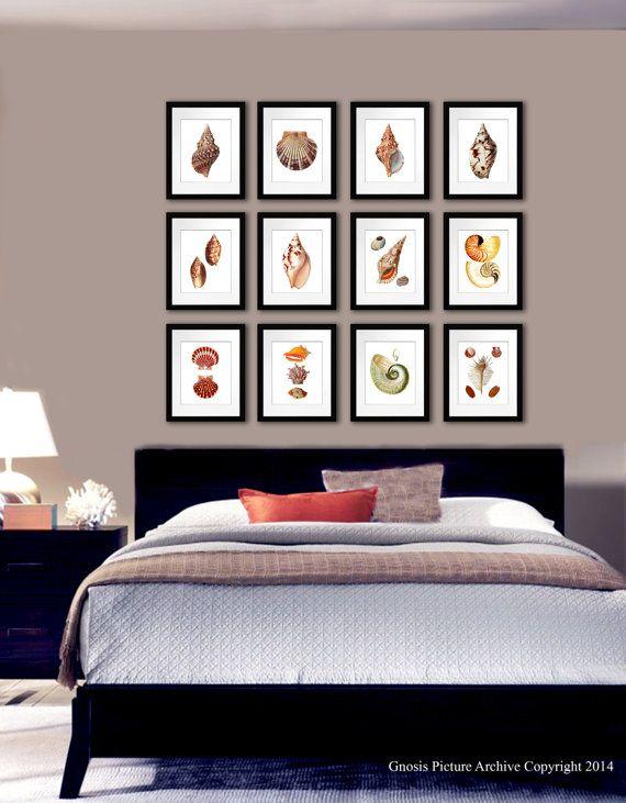Set Of 12 Sea Shells Home Decor Art Prints Beach Theme Bedroom