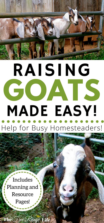 The Busy Homesteader's Goat Management Binder | Raising ...