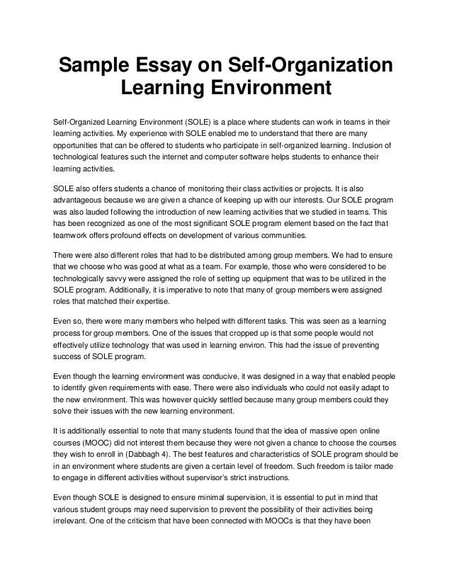 An Essay About Environment Example Google Search Sample Writing Tip On