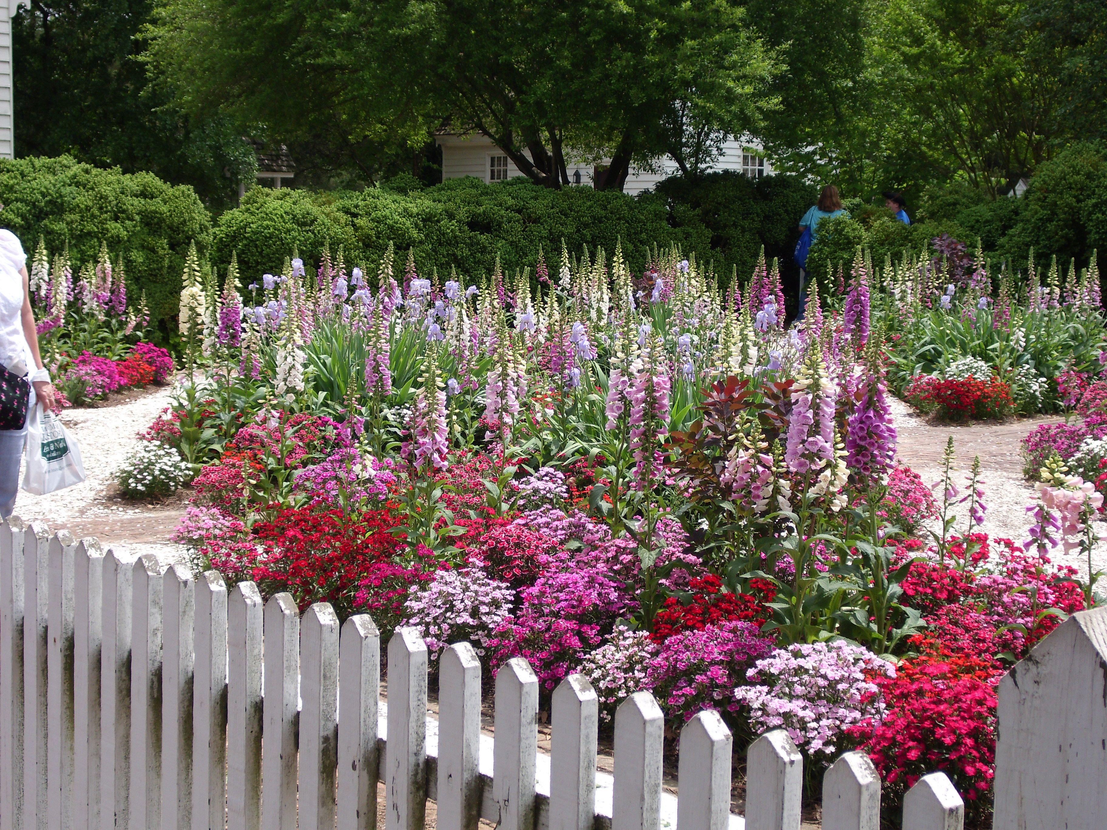 Gardens In Williamsburg Visit Williamsburg Beautiful Gardens Colonial Garden Lawn And Landscape