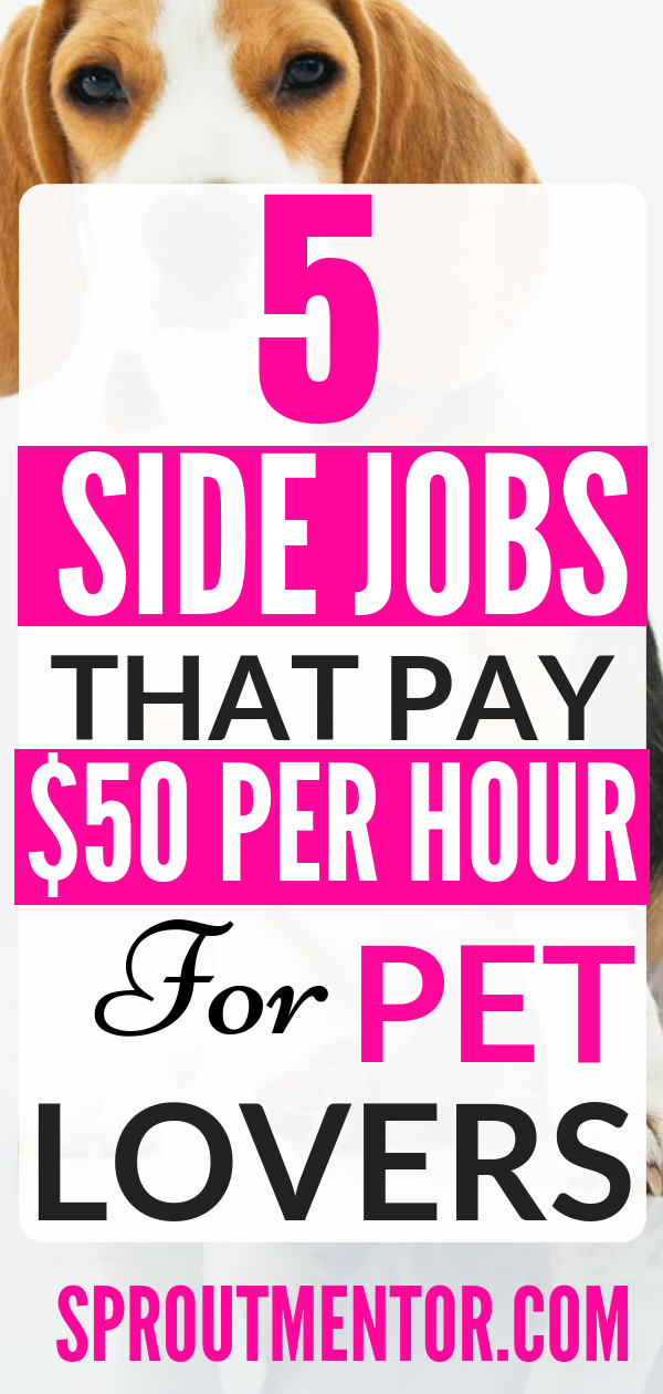 5 Of The Best Work From Home Jobs For Pet Lovers Work From Home Jobs Online Jobs From Home Best Online Jobs