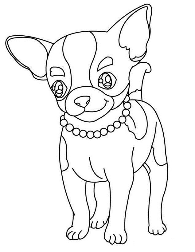 Pin Auf Animal Coloring