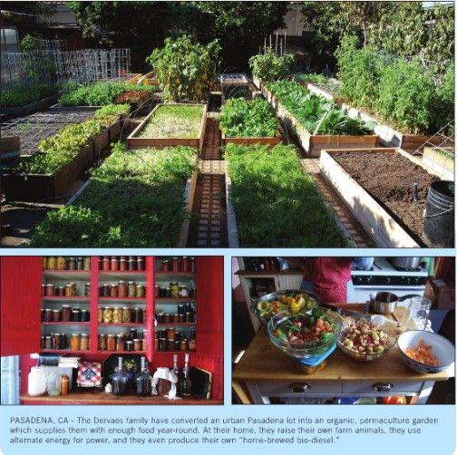 One Family's Journey Through Self-Sustaining Urban Gardening